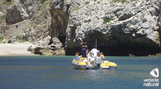 Passeio de Barco de Sesimbra ao Cabo Espichel! Descobre a Bela e Rica Fauna do Estuário do Sado!