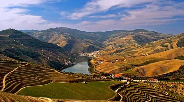 Estadia e Cruzeiro de 2 Dias no Douro -  1 Noite com Pensão Completa em Hotel 4*, Visita e Degustação de Vinhos!