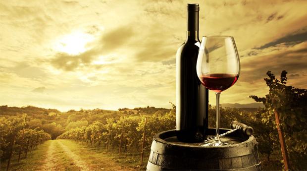 Percurso Pedestre ' A Beleza de Colares' com Degustação de Vinhos para 1, 2 ou 4 Pessoas em Sintra!