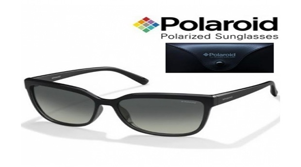 Óculos de Sol Polaroid® com Lentes Polarizadas PLD4029/S D28