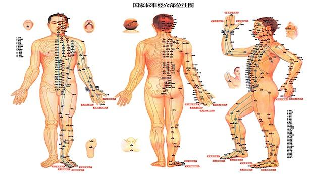 Tratamento da Dor em Geral, através da Medicina Chinesa em  Lisboa!