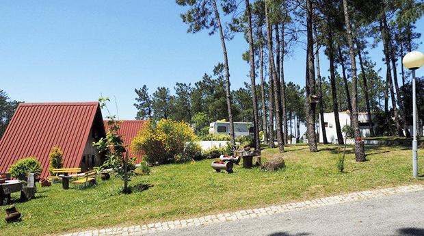 Visita a Serra do Buçaco, Verão Incluído -  Até 5 Noites em Bungalow Equipado no Parque de Campismo do Luso!