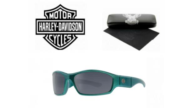 Óculos de Sol Harley Davidson® HDX888GRN-3