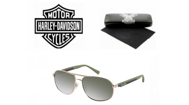 Óculos De Sol Harley Davidson BSHaDA868GLD-2