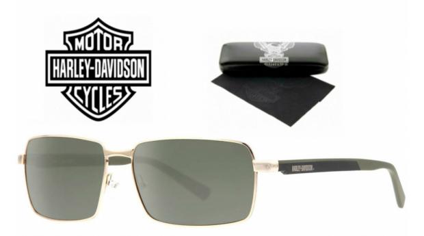 Harley Davidson Óculos De Sol BSHaDA 860 GLD-2