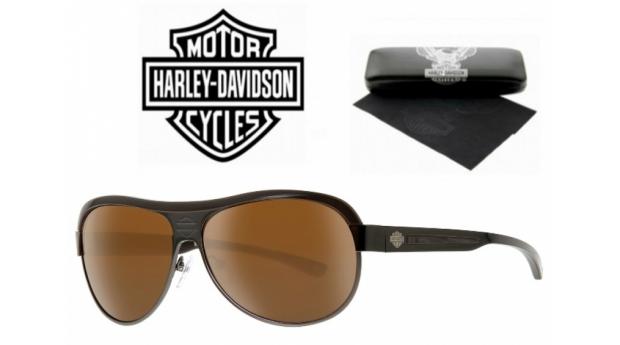 Harley Davidson Óculos De Sol BSHaDA864 GUN-2