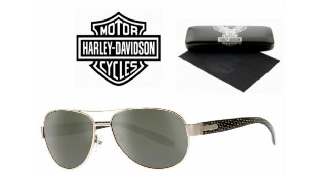Harley Davidson Óculos De Sol BSHaDA 866 GLD-2