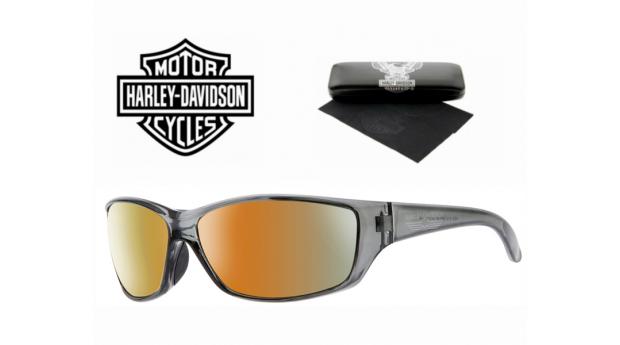 Harley Davidson® Óculos de Sol HD0619S GRY-3F