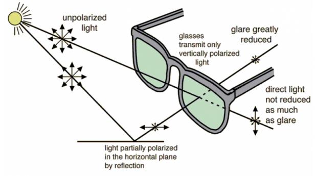 a7170c6bdbb90 Polaroid® Óculos de Sol Polarizados PLD 2043 S 807.61.M9