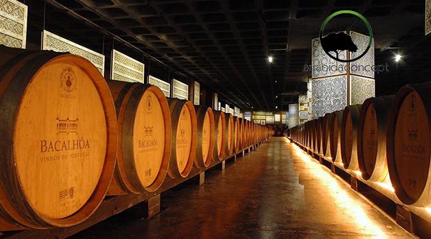 Circuito Natura na Serra da Arrábida com Degustação de Vinho e Produtos Regionais na Adega da Bacalhôa!