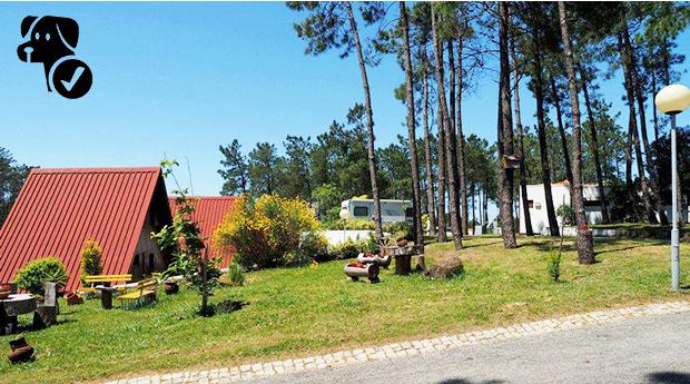 Desconto Black Friday! Fuja da Rotina com oferta de Meio Leitão e Espumante! -  2 Noites para 2 pessoas em bungalow no Parque de Campismo do Luso!