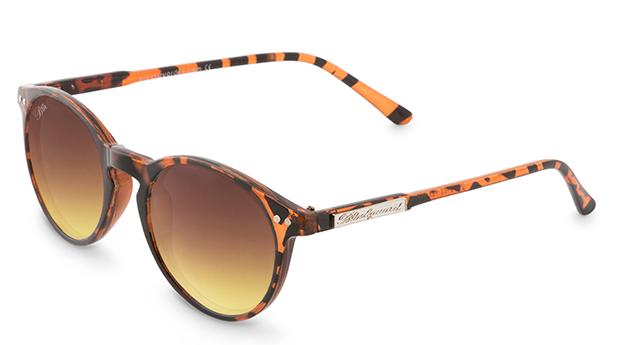 Óculos de Sol Animal Brown / Brownie D Rounded! Os Óculos de Eleição da Rainha Letizia!